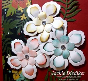 Botanical Blooms Textures Close Up